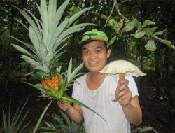 Chàng trai 8x với ý tưởng ươm cây thảo dược tặng người dân