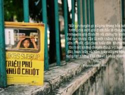 "Review sách ""Triệu phú khu ổ chuột"" – Vikas Swarup"