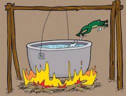 Con ếch nằm trong nồi nước sôi: Bài học về sự thức tỉnh bản thân