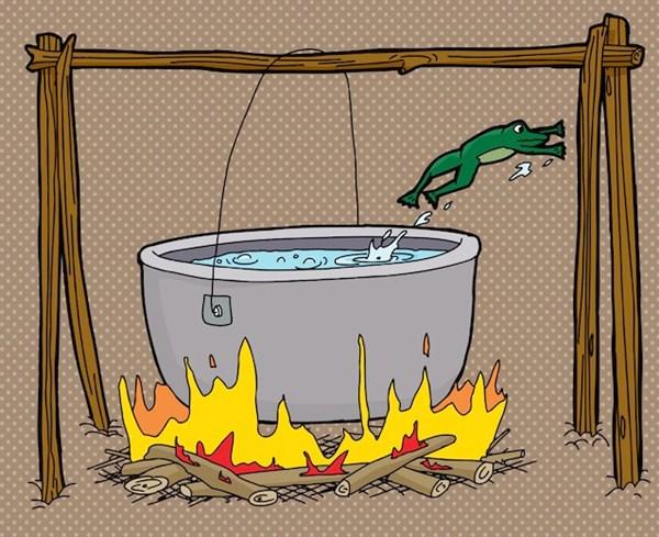 Câu chuyện con ếch nằm trong nồi nước sôi (Boiling frog). Ảnh 1