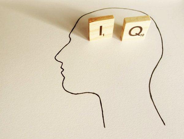 Trí thông minh IQ
