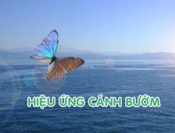 Review sách: Hiệu ứng cánh bướm (The butterfly effect)
