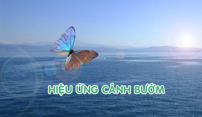 Sách hiệu ứng cánh bướm